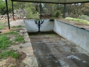 concrete_pool_before_reno_in_keysbrook.jpg